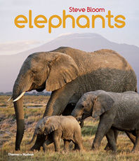 Elephants: A Book for Children Cover