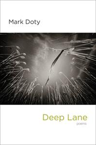 Deep Lane