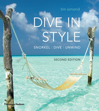 Dive in Style Cover