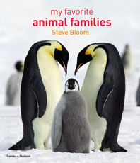 My Favorite Animal Families Cover