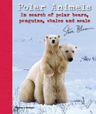 Polar Animals: In Search of Polar Bears, Penguins, Whales and Seals Cover